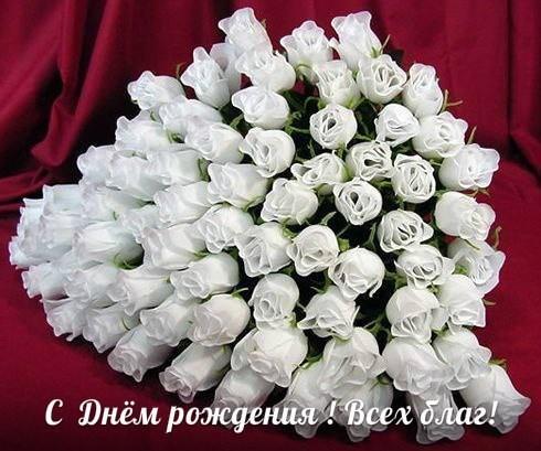 belokurovaau's photos